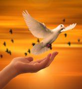 Virtudes teologales: ¿qué son y cómo se practican?